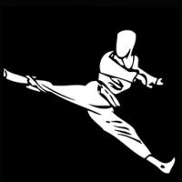 (c) Taekwondosit.nl