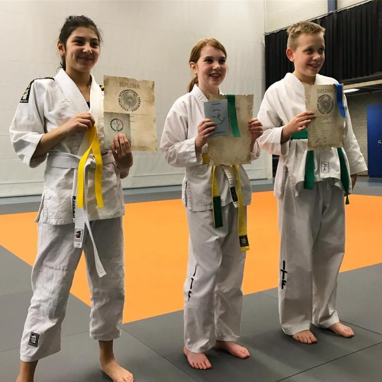 StichtingInternationalTaekwondoKids